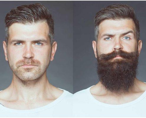 does wild growth hair oil really work